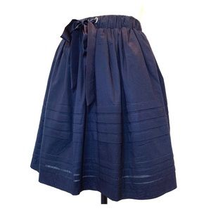 Anthropologie Full Skirt in Navy